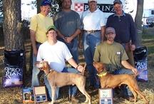 Union County Bird Dog Ranch