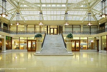 FLW Interiors