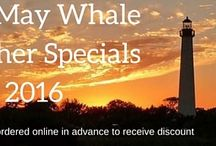 Cape May 2016 Specials Whale Watching and 4 Hour Fishing