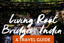 INDIA & NEPAL Travel Tips & Tricks / Help planning a trip to India, what to eat in India, where to stay in India and Nepal, the hiking capital of the world.
