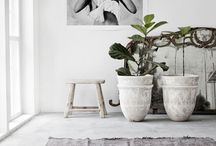 Plants pots etc / Pots and planters for indoors and out