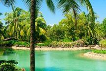 INDIA - Goa  / Where i need to go on my holiday!