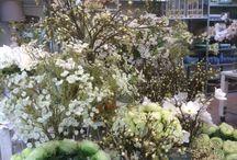 Zijde bloemen / Wij hebben een prachtig assortiment zijde bloemen van Silka. 2 x per jaar wordt dit aan de seizoenen aangepast.