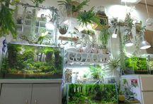 Aquariums, gardens and similar things