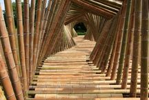 BamBoo / Here you will find all the products made from bamboo plant