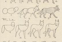 Tekenen dier