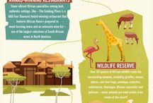 Animal Kingdom Lodge / Disney's Animal Kingdom Lodge Jambo House and Kidani Village. A deluxe villa resort near Disney's Animal Kingdom.