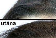 haj ápolása