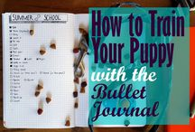 Bullet Journal Dogs