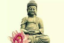 Quotes Meditation & Mindfulness