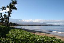 Possible Maui rentals