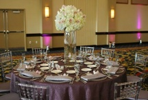 11.11.11 Silver and Grape Wedding: colors of the season / This was one of our 11.11.11 weddings. The bride chose silver and grape as her theme colors. She combined fortuny crush linens with clear chiavari chairs, round and square tables, flowers and crystal candelabras. The final product was amazing.