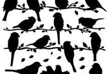 scrolls.silhou.vögel