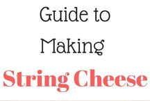 Make your own cheese & other milk products