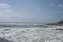 Surfing waves at Carcavelos Beach