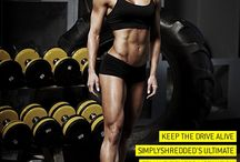 female fitness bodies