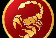 Ich bin ein Skorpion