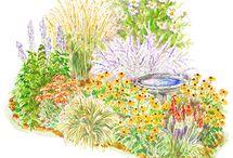 Zone 5 gardening