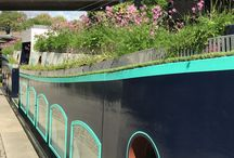 Floating Meadow & Popup  - May 2018 / Clifton Nurseries Floating Meadow was created on the Pioneer barge at Sheldon Square, for Paddington Central. Proudly part of Chelsea Fringe Festival!