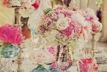 Antoniette wedding