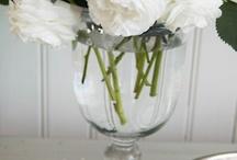 Flowers 9-27-14 / by Betsy Schatko