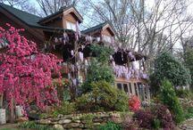 Flora and Gardens at Storybrook Farm / Enjoy a stroll through Storybrook Farm Bed & Breakfast's beautiful flower gardens!