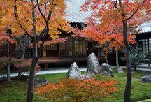 日本 - Giardino giapponese