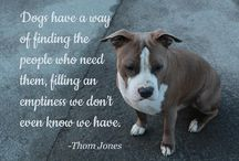 Quotes: Loss of Dog / Popular quotes on the loss of a dog by famous authors, celebrities, and newsmakers. Pin a quote that provides you with comfort or inspiration in your time of need.