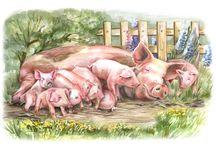 Свинки картинки
