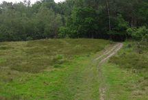 wandelen door Twente