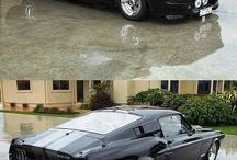 Simply Mustang