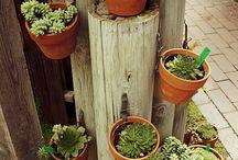 4 záhradkárčenie