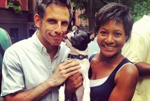 Celebs And Their Boston Terrier / They're just like us! Celebs love Boston Terriers too!