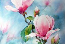 mind blowing magnolias