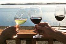 Sonoma, CA / Wine tasting and travel through Sonoma California