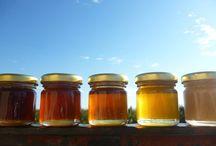 Το μέλι (Honey) / Πιστεύουμε ότι το μέλι πρέπει να εξάγεται από την κηρήθρα χωρίς καμία επεξεργασία, στην πιο αγνή μορφή του. Γι αυτό το λόγο το μέλι μας δεν θερμαίνεται σε κανένα στάδιο της παραγωγής του (άθερμο μέλι) και δεν αναμειγνύουμε διαφορετικά είδη μελιού (χαρμάνια).