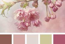 *Colours*