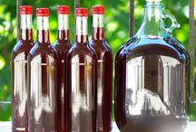 megy bor készités