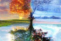 Naturaleza Divina