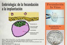 Infografias. Clinica ProcreaTec. / Pequeñas infografias donde encontraréis un montón de consejos y tips útiles relacionados con la fertilidad, el embarazo, la salud de la mujer, etc.