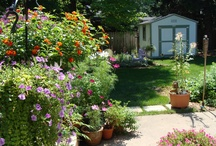 My Own Botanical Garden in Green Bay / by Kathy Ahrens