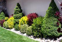 zahrada dizajn