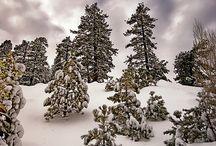 Big Bear Mountain / California