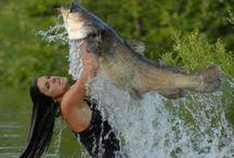 Gone Fishing / Fishing / by Joyce
