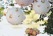 butterflies / by Kathleen Zaidel