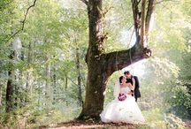 Wedding 2016 / 0