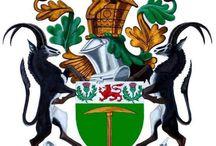 my beautiful zimbabwe