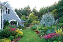 Garden / садовый дизайн