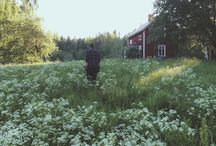 Hultebo / #torp #cottage