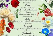 Birth Flowers / Birth Flowers for every month of the year